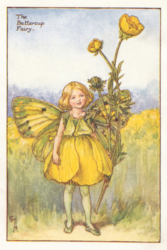 The Buttercup Fairy Genuine Antique Print 1930 S