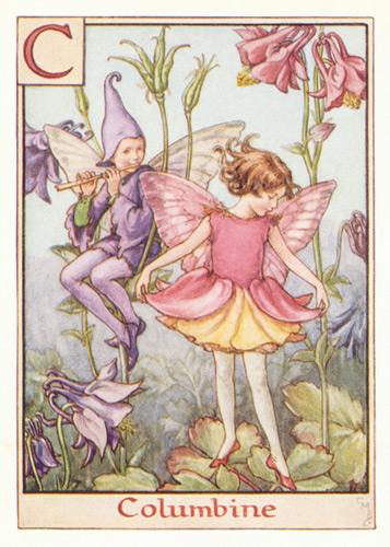 Buy fairy art pink purple and violet colours antique columbine flower fairy print mightylinksfo