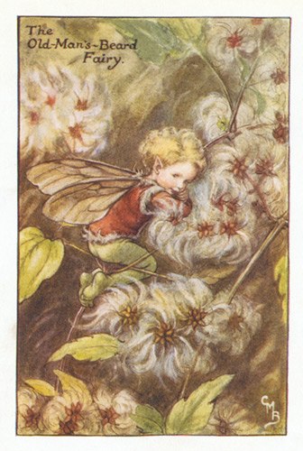Buy Antique Flower Fairy Art, 1920's-1950's, Guaranteed Old Prints