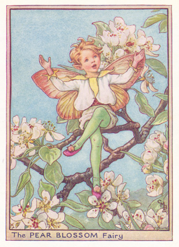 February Fairy, Buy a Genuine, Exclusive Antique February Fairy Picture